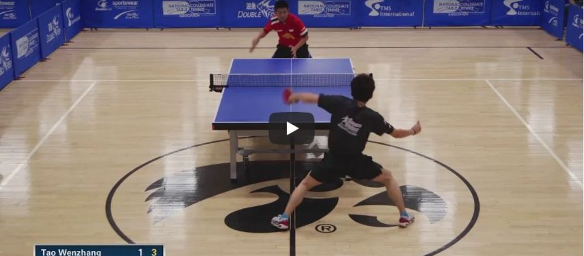 2018 Paddle Palace Hawkeye Open – Final – Tao Wenzhang vs Akifumi Hamakawa Highlights